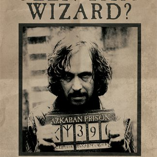 Harry Potter (Wanted Sirius Black)