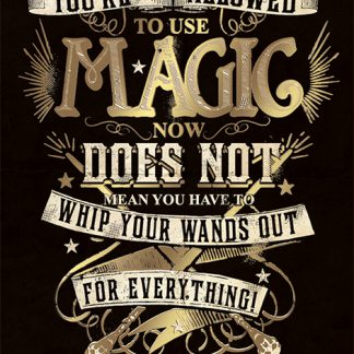 Harry Potter (Magic)