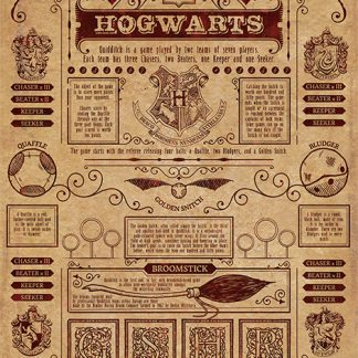 Harry Potter (Quidditch At Hogwarts)