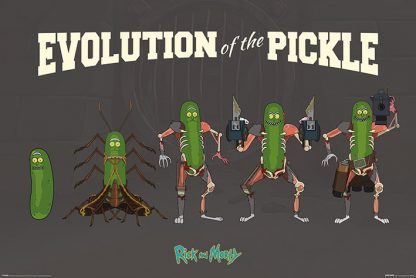Rick and Morty: Evolution Of The Pickle