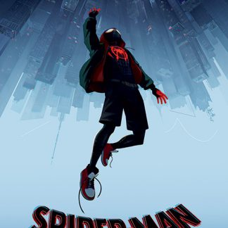 Spider-Man Into The Spider-Verse - Fall