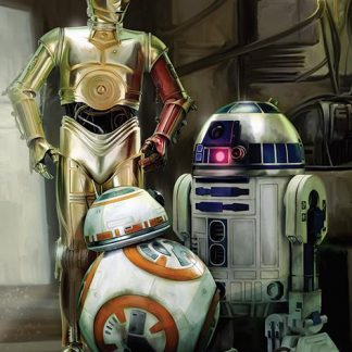 Star Wars EP7 Droids