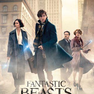 Fantastic Beasts street