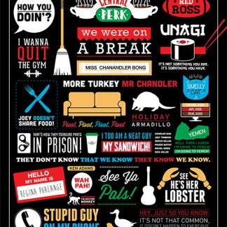 Friends - Infographic