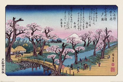 Hiroshige - Mount F